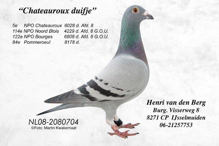 08-2080704 Chateaurouxduifje