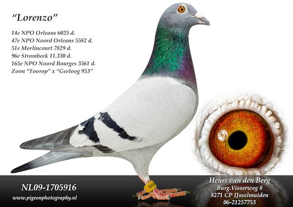 09-1705916 Lorenzo